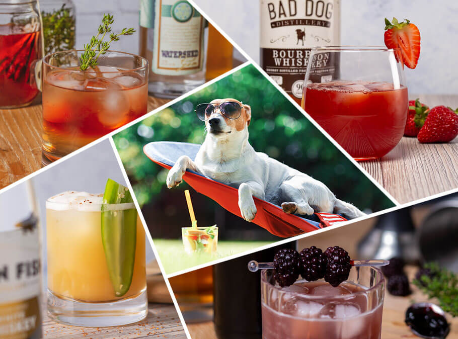 "BigFish has gathered a range of summer recipes for the ""dog days of summer."""